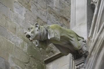 Gargoyle - Carcassonne, France