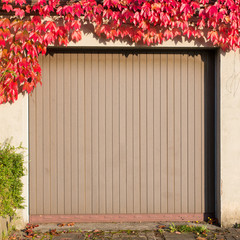 old garage with red ivy