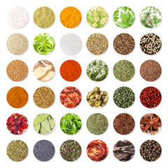 Collection of spices and herbs isolated on white