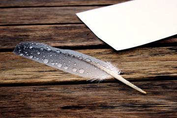 Feder und Papier auf einem Holztisch