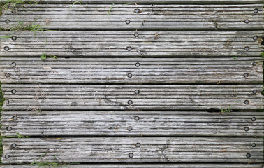 Wooden jetty texture