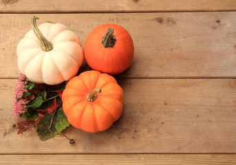 Three pumpkins on wood background