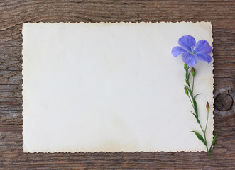Wild blue flower and old empty paper form on an old wooden backg
