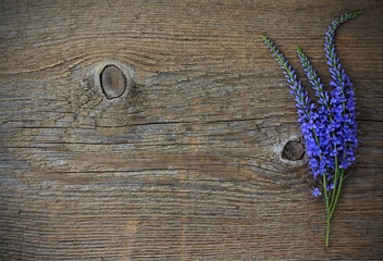Bouquet of wild blue flowers on an old wooden background