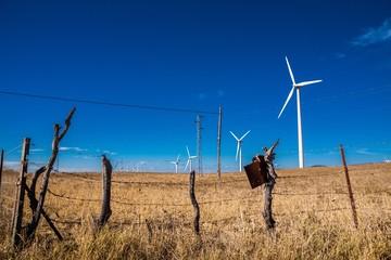 Energieerzeugung durch Windkraft