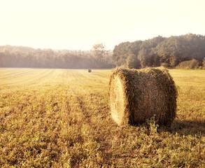 meule de foin dans la campagne