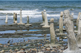 stonework statues leading into the St. Laurence River poster