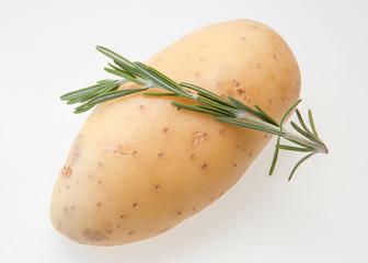raw potato with rosemary stem