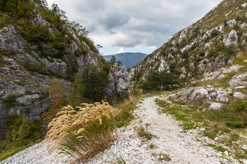 Scenic hiking path in the mountains in autumn