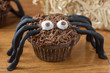 canvas print picture - Chocolate Cupcake Spiders