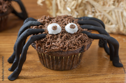 canvas print picture Chocolate Cupcake Spiders