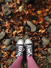 trainers standing in autumn leaves