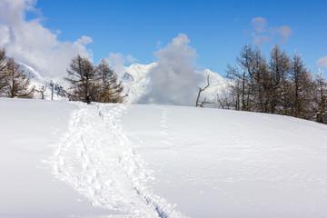 Tracce su neve in montagna