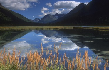 Mountain Lake, Kenai, Alaska, Usa
