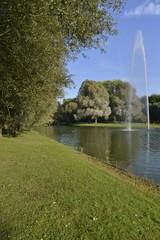 L'étang du parc d'Anderlecht en pleine verdure