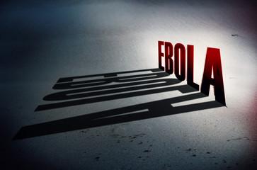 Deadly virus Ebola