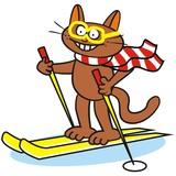 Tomcat and ski poster