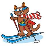 Tomcat and ski, superman poster