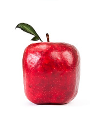 Red Square apple on a white background.