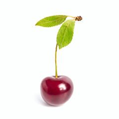 Fresh Cherry fruits