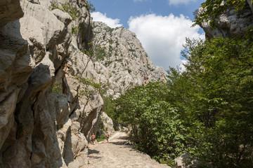 Chemin dans le canyon de Paklenica