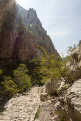Sentier dans le canyon de Paklenica Velebit