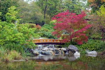 Setagayapark Japanischer Garten in Wien