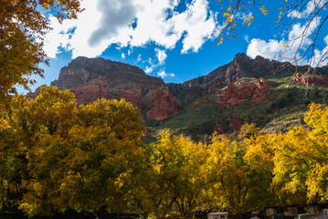 Sedona Arizona USA Fall Colors