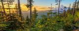 Beautiful Vista of Mount Hood in Oregon, USA. - 71088377
