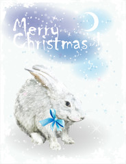 Christmas card  with white rabbit