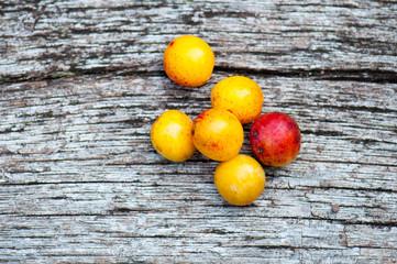 Mirabelles plums