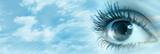 Human eye - 71092731