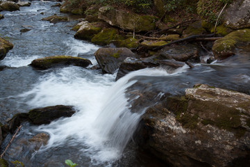 Mountain stream cascading by rocks