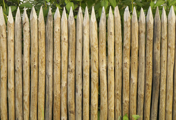 Solid picket fence of sharp stakes