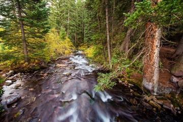Colorado Mountain River