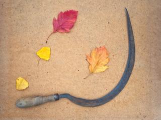 Серп и осенние листья