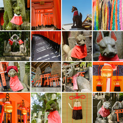 Collection of Fushimi Inari Taisha Shrine scenics
