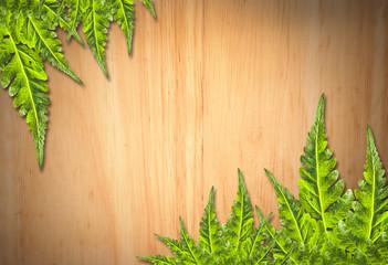 Old wooden background with green leaf frame