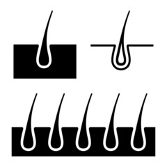 Hair Follicle Icons Set. Vector