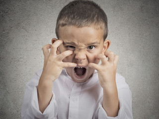 angry child, Boy Screaming hysterical on grey background