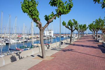 Port Olimpic Promenade in Barcelona