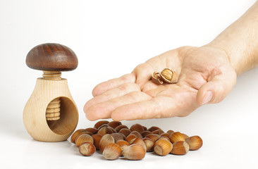 Sharing concept: male hand holding unshielded hazelnuts