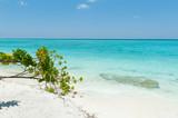 Beautiful scene in Indian Ocean, Maldives Islands
