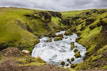 Skogarfoss skógafoss rivière chutes Islande