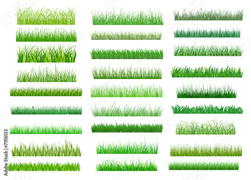 Fresh green spring grass borders poster