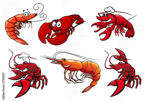 Seafood characters of shrimp, prawns and lobsters - 71116137