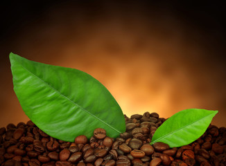heap of coffee beans with leaves close up