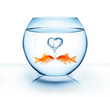 canvas print picture - goldfish in love - romantic concept