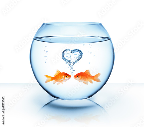 canvas print picture goldfish in love - romantic concept