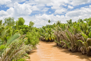 Mekong river between islands of its delta.